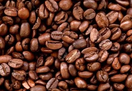Great Gourmet Coffee