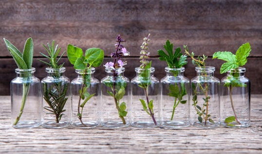 Religious herbs