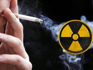 Radioactive tobacco