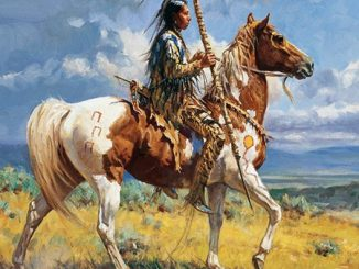 The American Indian Horse