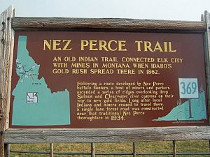 Gold and the Nez Perce