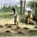 Aboriginal Farming in New England