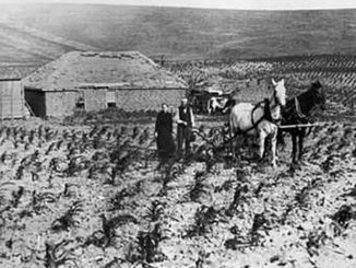 Farmers on the Northern Plains