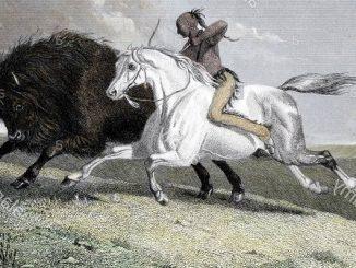 horse-mounted buffalo hunters