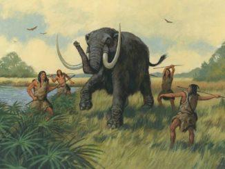 Ancient America: Florida, BCE