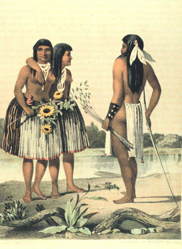 Medicinal Plants Used by the Chumash Indians