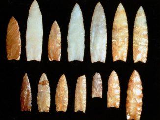 A Plateau Clovis Cache