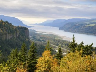 The Lower Columbia River Area