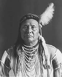 Nez Perce Political Organization