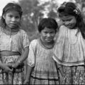 The Muskogean Language Family